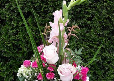 K promócii Ružová gladiola