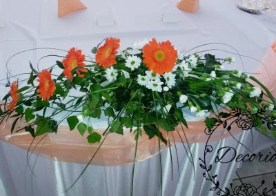 Oranzove gerbery