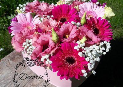 flowerbox Ružoví mušketieri