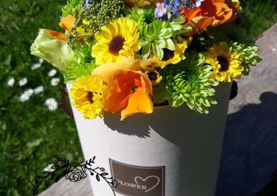 flowerbox jarný