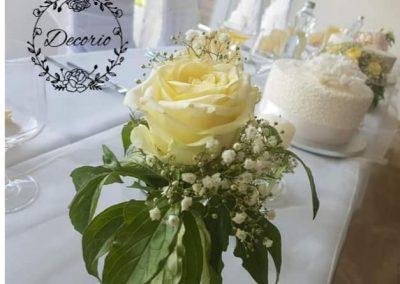 smotanové ruže